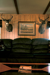 Stock photo of deer heads hanging on the wall of a hunting cabin