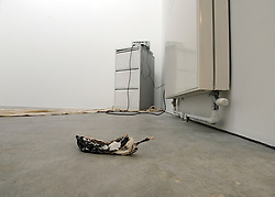 © licensed to London News Pictures. LONDON, UK.  22/06/11. An installation by artist Nadia Visram entitled 'Banana' the work features slide projections, a filing cabinet and a rotten banana. Students present their work at The Royal College of Art's Fine Art Graduate Show 2011. The show runs from 24th June-3rd July 2011. Mandatory Credit Stephen Simpson/LNP
