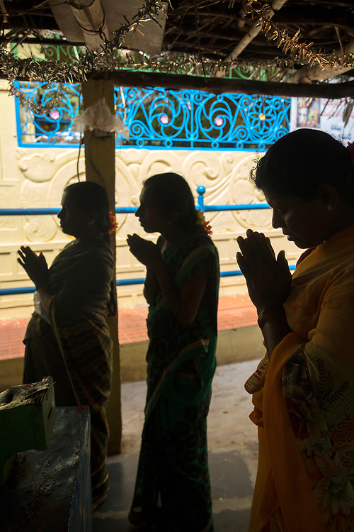 THIMMAMMA MARRIMANU, INDIA - 29th October 2019 - Pilgrims visit the temple at the centre of the Thimmamma Marrimanu banyan tree - the world's largest single tree canopy.