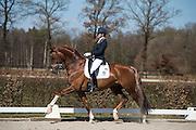 Emmelie Scholtens - Charmeur<br /> Selectie WK Jonge Dressuurpaarden 2013<br /> © DigiShots