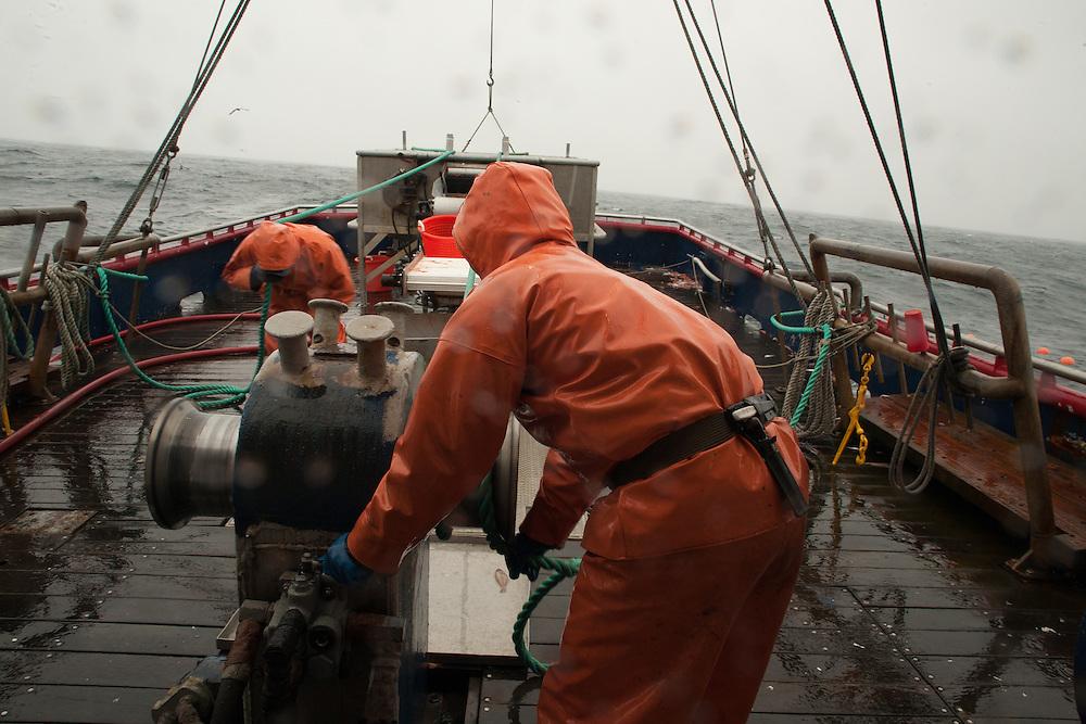 Striker, Gary Batchelder Sorts the Catch on the shrimp trawler The Lady Kay   August 27, 2008