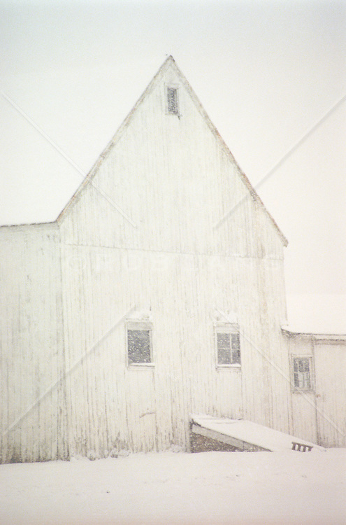 White barn in a snow storm