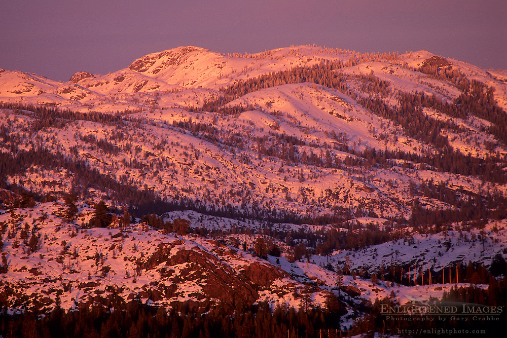 Sunset light on the mountain of the Sierra Nevada near Emigrant Gap, Tahoe National Forest, California