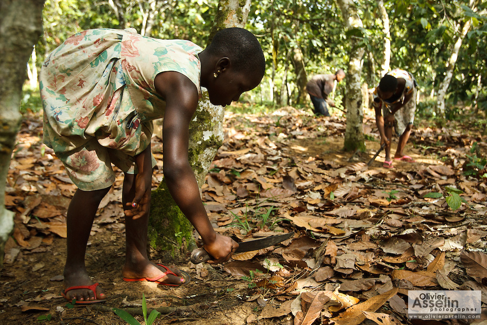 Koffi Affoue Ange, 10, (L) and Drissa Amoin Rose, 11, (R) use machetes to clear dry leaves under cocoa trees on their family's cocoa plantation near the village of Soumaorodougou, Bas-Sassandra region, Cote d'Ivoire on Saturday March 3, 2012. They go to school but help with farming chores on weekends.