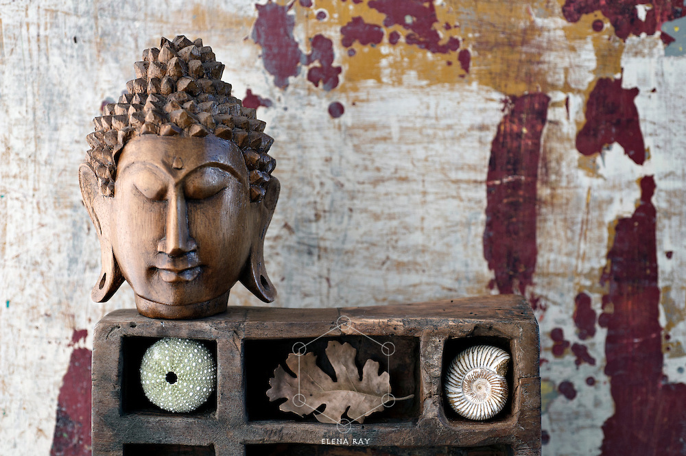 Still Life Photography. Beautiful wood buddha and natural objects.