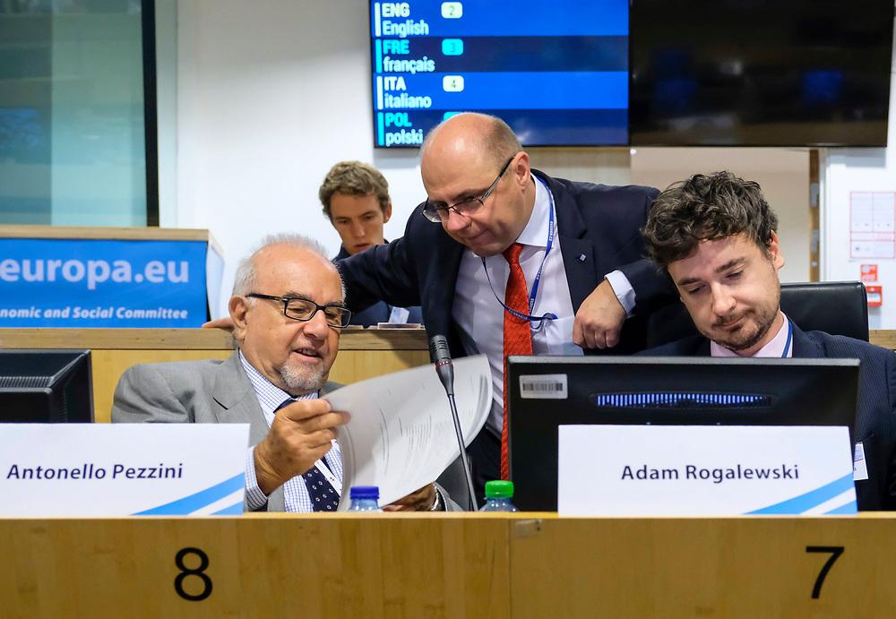 SOC Hearing - European Solidarity Corps & Youth Initiative - Panel 1
