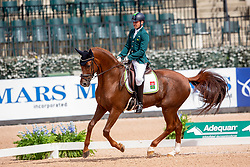 Riskalla Rodolpho, BRA, Don Henrico<br /> World Equestrian Games - Tryon 2018<br /> © Hippo Foto - Sharon Vandeput<br /> 18/09/2018