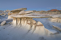 Wing sandstone formations, Bisti Badlands, Bisti/De-Na-Zin Wilderness, New Mexico