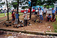 Indonesia, Sulawesi, Tomohon. Tomohon's market is a meeting place for the Minahasans. People come from all over the Minahasa region to buy and sell food and other goods. Roosters prepared for cockfight.