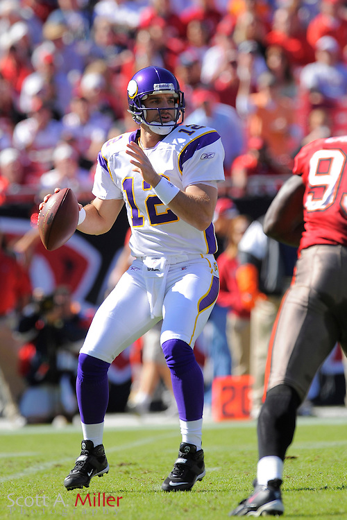Nov. 16, 2008; Tampa, FL, USA; Minnesota Vikings quarterback Gus Frerotte (12) in action during the  Vikings game against the Tampa Bay Buccaneers at Raymond James Stadium. The Bucs won 19-13. ...©2008 Scott A. Miller