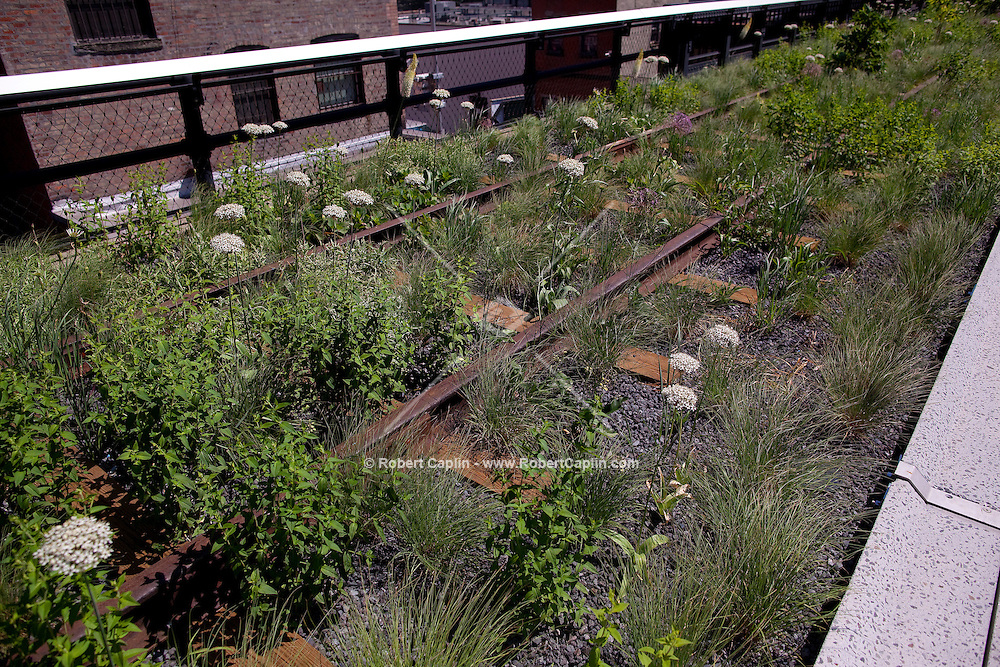 Section 2 of the High Line Park in New York is opening June 8, 2011. ..Photo by Robert Caplin.