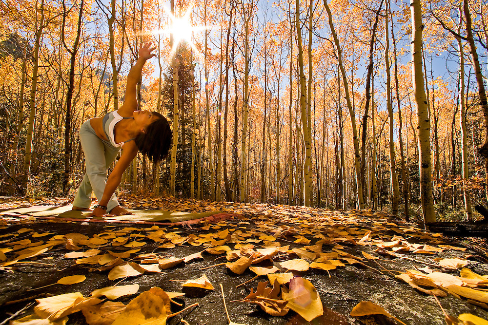 Yogini Ally Nguyen (Asian/American female, late twenties) performs yoga (Revolved Triangle Pose) amid autumn aspen trees, Little Cottonwood Canyon, Salt Lake City, Utah USA.