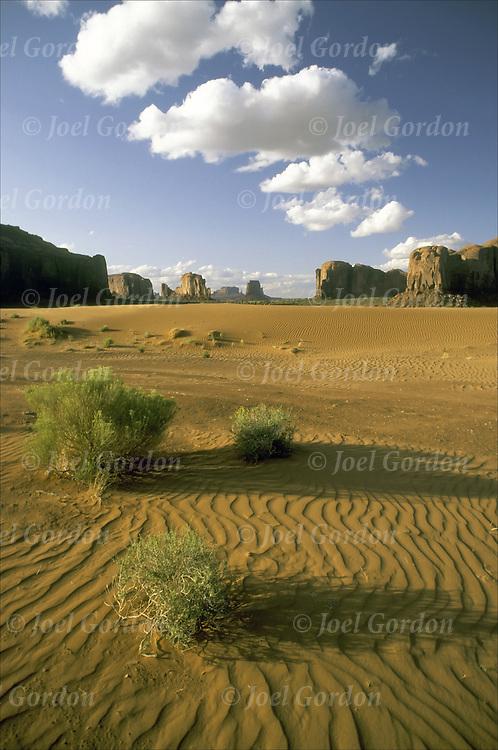 Monument Valley, UT:  desert, sand, arid. view in the late day sun.