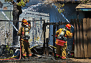 Las Vegas Fire & Rescue attack an apartment fire at 1820 East Lewis Ave. which spread to a nearby tree and shed on Thursday, June, 19, 2014.  L.E. Baskow