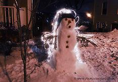 Electric Snowman