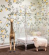 Plexi Craft Crib