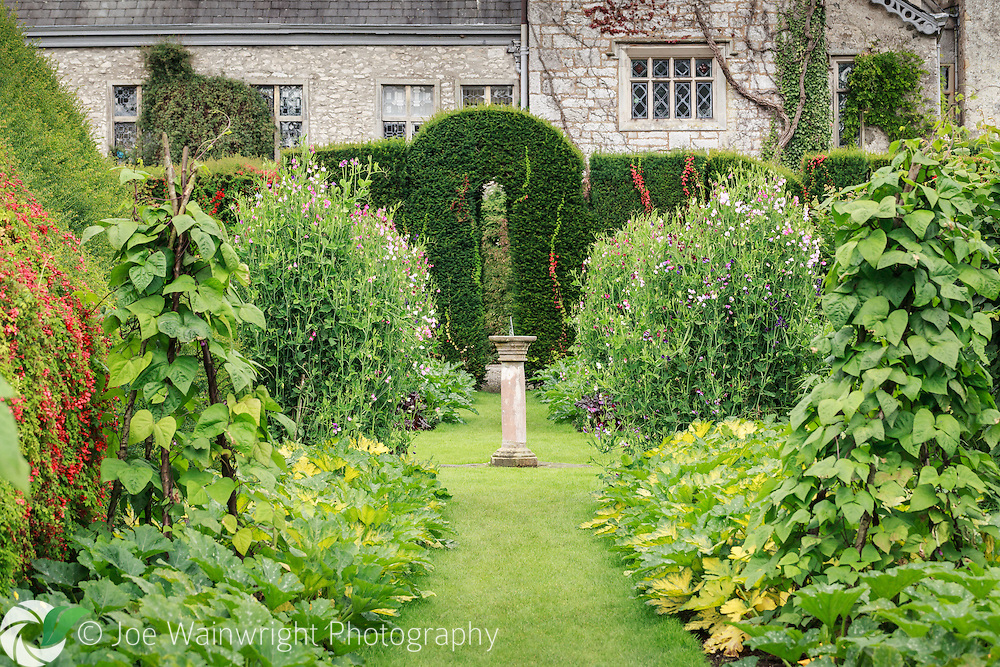 Away from the famous topiary, the gardens at Levens Hall, Cumbria, boast many distinct areas of rich planting.  Here the windows of the ancient house look out onto beds of vegetables and fragrant sweet peas.
