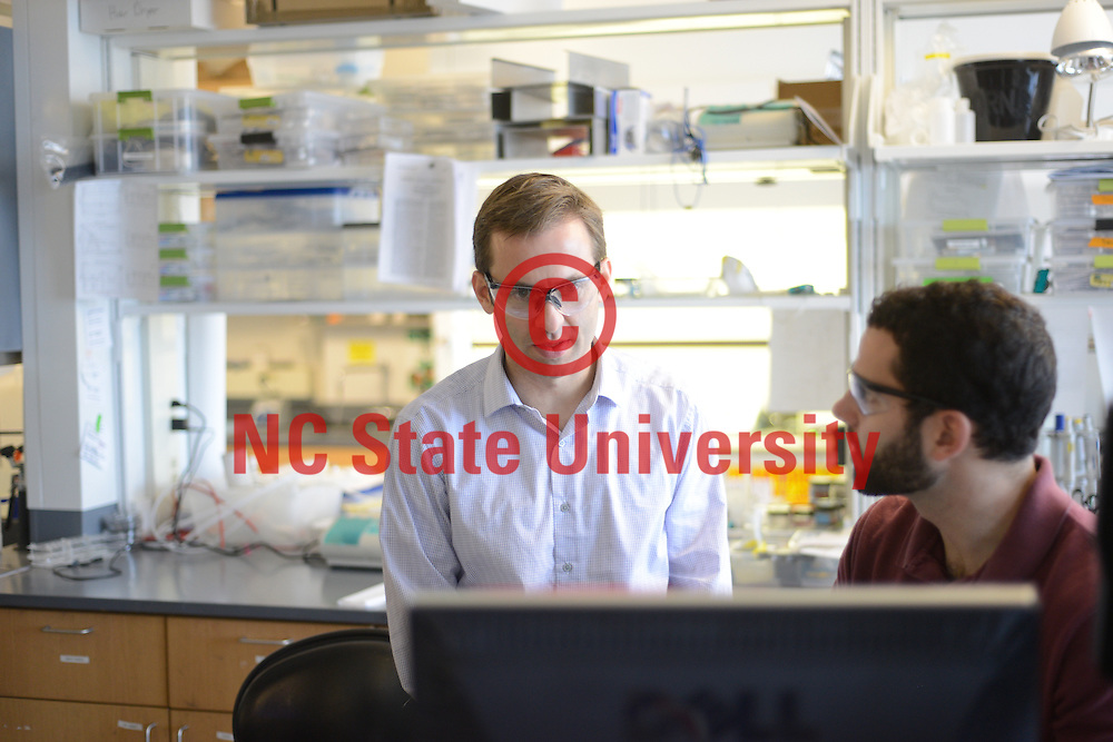 Students work in the lab of Dr. Michael Dickey. Photo by Marc Hall