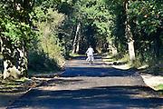 Nederland, Nijmegen, 1-10-2015Ronom het tentenkamp, kamp Heumensoord is een rondweg van asfalt aangelegd. Op lastvan de provicie gelderland is dit alsnog gebeurd om lekken van olie uit voertuigen op te vangen. Heumensoord is ook waterwingebied. Natuurmonumenten, eigenaar van het gebied, was er niet blij mee. Er is milieuvriendelijk asfalt gebruikt.FOTO: FLIP FRANSSEN/ HH