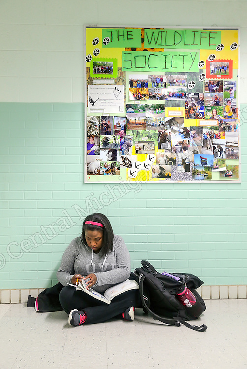 NEUROSCIENCES student .......... studies in the hallway of Brooks Hall in January 2015 on the campus of Central Michigan University in Mt Pleasant, MI.  <br /> <br /> Photo by Steve Jessmore/Central Michigan University