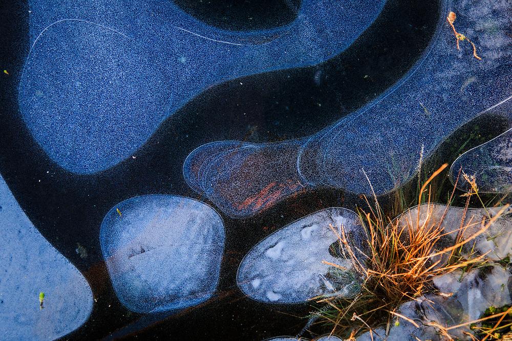 Ny is i hällkar på klippa i Stockholms skärgård närbild