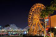 The Pike Ferris Wheel at Night Downtown Long Beach