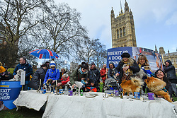 "© Licensed to London News Pictures. 10/03/2019. LONDON, UK.  Pro-Remain owners bring their dogs to Victoria Park Gardens, next to the Houses of Parliament, for ""Brexit is a Dog's Dinner"", a protest to urge MPs to vote to ensure that a no-deal Brexit is avoided and to give the people of the UK a final say.  Next week, there will be a series of up to three votes in the House of Commons where MPs will vote on whether to accept Theresa May's Brexit deal.  Photo credit: Stephen Chung/LNP"