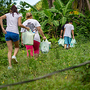 JULY 19, 2018----UTUADO, PUERTO RICO---<br /> The power line that has been disconnected since the path of Hurricane Maria on September 20, 2018 and has kept this family in Utuado in the dark.<br /> (Photo by Angel Valentin/Freelance)