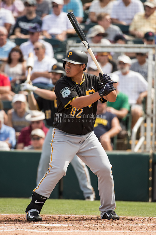 FORT MYERS, FL- MARCH 01: Jin-De Jhang #82 of the Pittsburgh Pirates bats against the Minnesota Twins on March 1, 2017 at the CenturyLink Sports Complex in Fort Myers, Florida. (Photo by Brace Hemmelgarn) *** Local Caption *** Jin-De Jhang