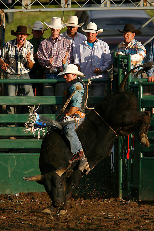 "061810-Evergreen, COLORADO-pbr-Bull rider Bo Wertz, of Penrose, CO, during the 3rd annual PBR ""Friday Night Bulls"" competition Friday, June 18, 2010 at the El Pinal Rodeo Grounds..Photo By Matthew Jonas/Evergreen Newspapers/Photo Editor"