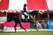Chantal Nijpjes - Don Diablo<br /> Centrale Keuring Vrouwenpolder 2012<br /> © DigiShots - Esmee van Gijtenbeek