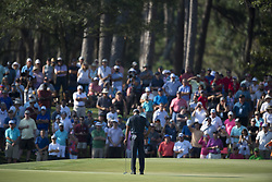 May 11, 2018 - Ponte Vedra Beach, FL, USA - The Players Championship 2018 at TPC Sawgrass..Tiger Woods on 14 green, considering his putt. (Credit Image: © Bill Frakes via ZUMA Wire)