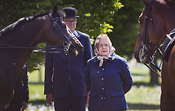 © Licensed to London News Pictures. 10/05/2017. Windsor, UK. Queen Elizabeth II admires a pair of horses at the Royal Windsor Horse Show. The five day equestrian event takes place in the grounds of Windsor Castle. Photo credit: Peter Macdiarmid/LNP