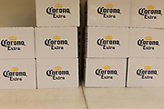 As the UK government announces further Coronavirus-related restrictions to its citizens, with the immediate closure of pubs, cafes, gyms and cinemas, and the worldwide number of deaths reaching 10,000 with 240,000 cases, 953 of those in London alone, only Corona is the only beers still on shelves at a Sainsbury's supermarket in East Dulwich, on 20th March 2020, in London, England.