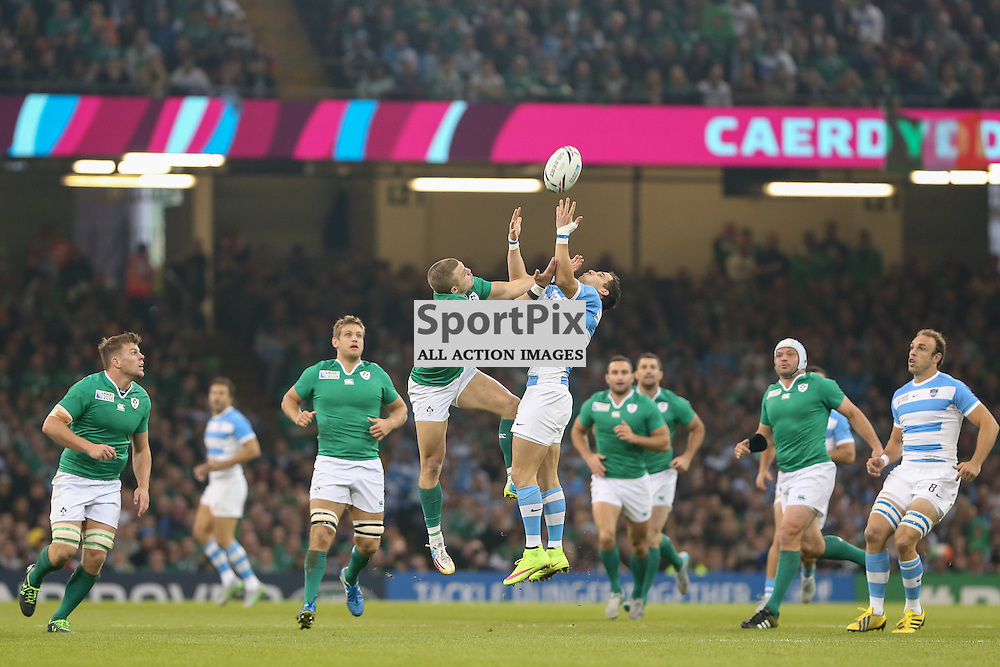 Joaquim Tuculet catches the ball during the Rugby World Cup Quarter Final, Ireland v Argentina, Sunday 18 October 2015, Millenium Stadium, Cardiff (Photo by Mike Poole - Photopoole)