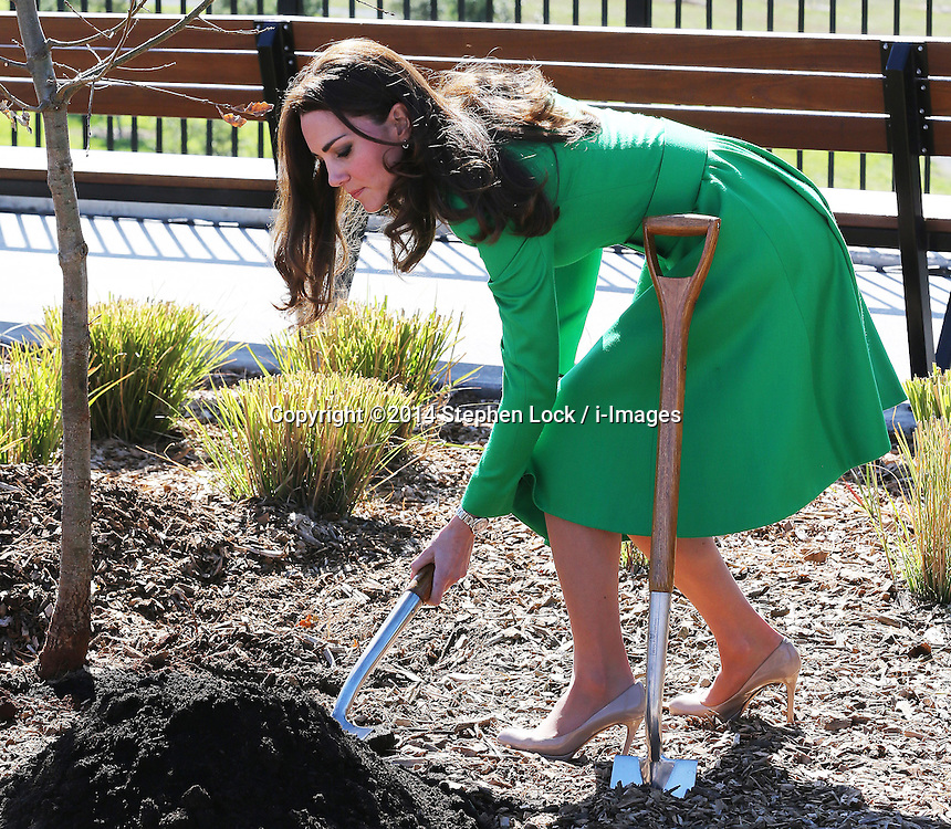 The Duchess of Cambridge plants a tree at the National Arboretum in Canberra, Australia, Wednesday, 23rd April 2014. Picture by Stephen Lock / i-Images