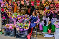 Chine, Hong Kong, Kowloon, marché aux fleurs // China, Hong Kong, Kowloon, flower market