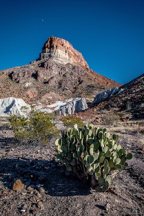 Cerro Castellan - Big Bend National Park, Texas