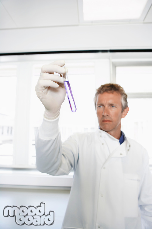 Male lab worker holding petri dish to the light