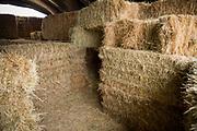 Labyrint i hö för de yngsta besökarna hos Bauman Farms, Gervais, Oregon, USA<br /> Foto: Christina Sjögren