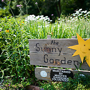 The Sunny Garden, maintained by volunteer gardeners, at Bon Air Park in Arlington, Virginia.