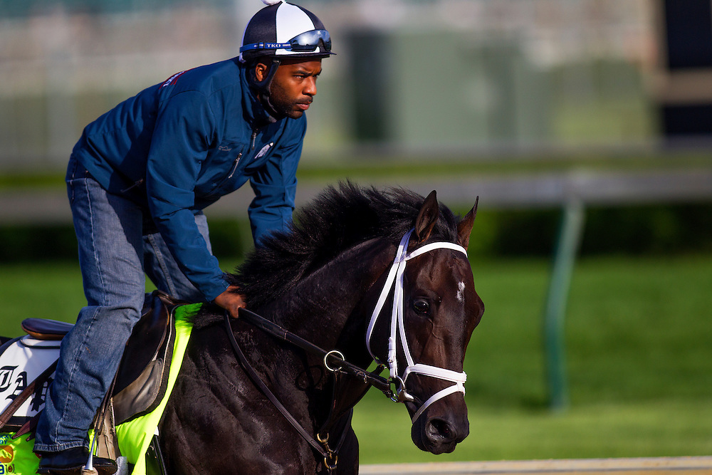 Kentucky Derby contender Revoloutionary gallops at Churchill Downs in Louisville, KY on May 02, 2013. (Alex Evers/ Eclipse Sportswire)