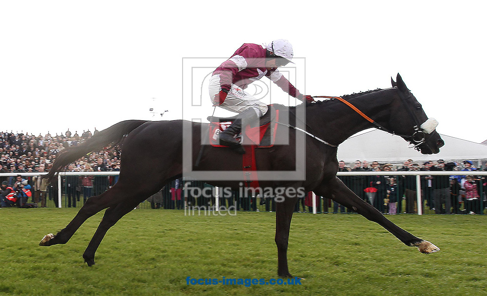Paul Carberry on Don Cossack lands in front to win the Gold Cup during Day Two of the Punchestown Festival at Punchestown Racecourse<br /> Picture by Focus Images/Focus Images Ltd 07814 482222<br /> 29/04/2015