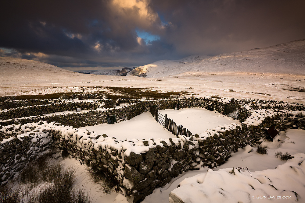 Welsh mountain sheep pens lie desolate in the bitter winds and snow and there was silence all around save for the wind through the cold stone walls. In the summer there is no such solitude, and the sounds of the sheep return with the sounds of walkers.