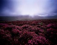 East of Ireland