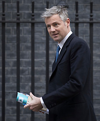© Licensed to London News Pictures. 30/01/2018. London, UK. Zac Goldsmith MP visits Number 10 Downing Street.  Photo credit: Peter Macdiarmid/LNP