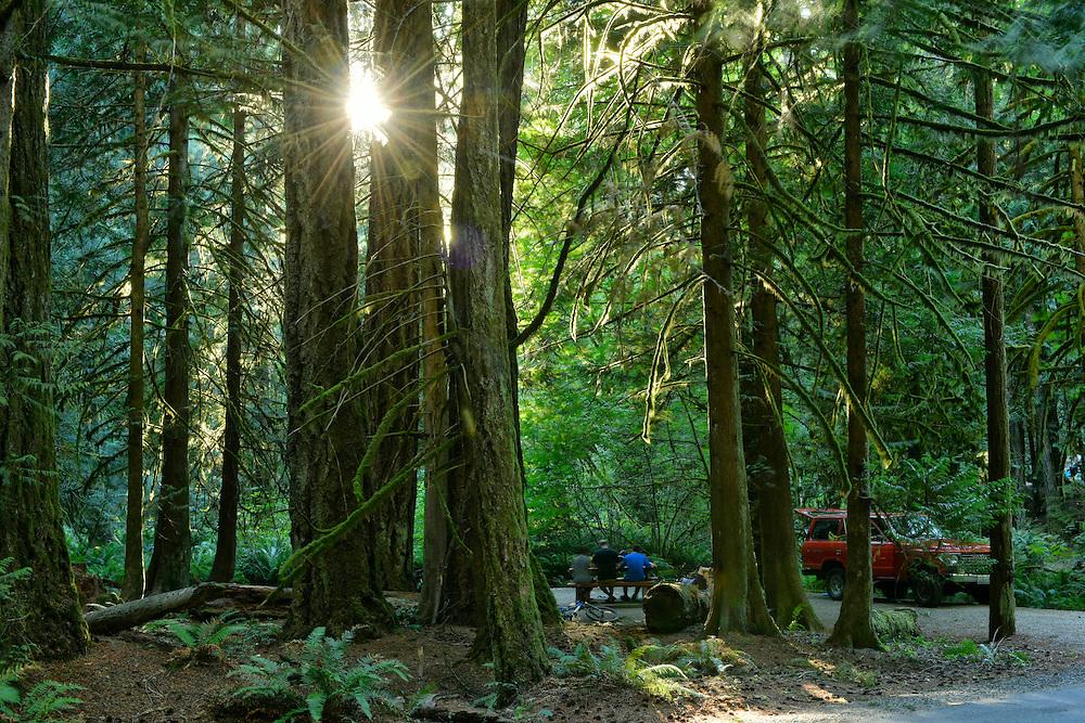 Canada, British Columbia Vancouver Island,Victoria, Goldstream Provincal Park