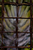 Close-up of an old metal barbed fence, with one section missing.