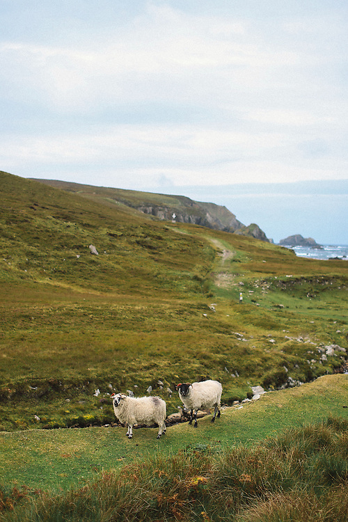 Port Donegal Ireland