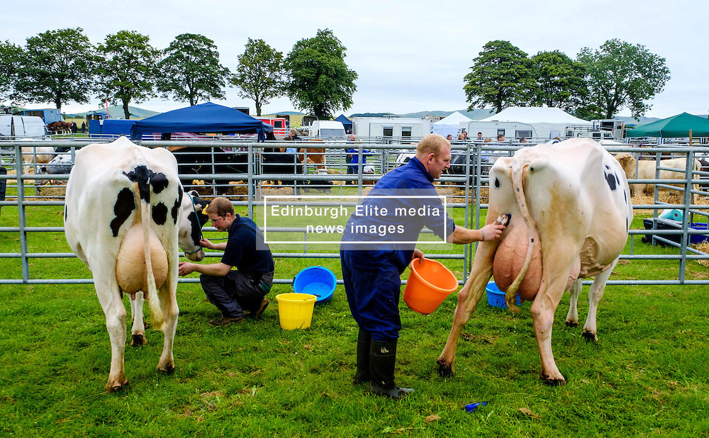 Biggar, South Lanarkshire, Scotland 23 July 2016<br /> <br /> Preparing cattle for showing.<br /> <br /> <br /> (c) Andrew Wilson | Edinburgh Elite media